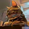 猫を撮ったらこのアプリで化ける【Prisma】