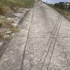 散歩道はトラップがいっぱい、そして坂道ダッシュ!話変わるけどマンダロリアンのジーナ・カラーノは本当に強い