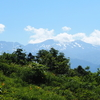 今年を振り返る「白山高山植物園」