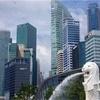 F1シンガポールGP決勝🏎🏁