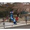 大津市北大路3丁目東児童遊園「ジャングルジム転落」女児死亡事故、兄が傷害致死容疑で逮捕
