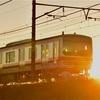 新年のご挨拶と武蔵野線の初日の出撮影