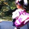 平日に京都水族館と綾小路公園に行ってきた その2