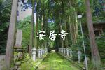 こだまに会える(ような気がする)お寺。南砺市の安居寺
