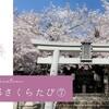 2021京都さくらたび⑦ 真如堂~金戒光明寺