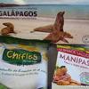 夢の島ガラパゴスへ
