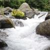 おいしい水と最高のハイキングを。情報に埋もれた心をデトックスする湧水地・尚仁沢