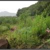 長野県小布施 『浄光院』
