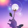【制限を外し愛を育む時】2019年5月19日さそり座満月のスピリチュアルメッセージ