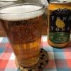 【うつ病とお酒】お酒はタブー!だけど、ビールはうつ状態を改善してくれる成分が満載【ビールは薬!】