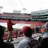 「フェンウェイパークの球場見学ツアー」ツアー内容全部解説。1時間で楽しめるボストンのオススメアトラクション。