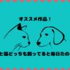 笑いと癒し!犬と猫どっちも飼ってると毎日たのしい[2020年秋アニメ化!]