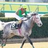 19/02/23 Japanese Racing