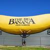 コフスハーバーにて、ビックバナナと記念撮影