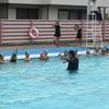 水泳の授業 校内整備ボランティア