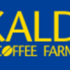 【KALDI 夏の麺その3】カレー味の麺を2種類食べ比べ