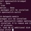 Ubuntu Server 12.10 Alpha 2(2)