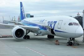 2017年ハワイ旅行記〔番外編〕 アメックス手荷物宅配サービスの利用法。国内でスーツケースを運ぶのは1分だけ!