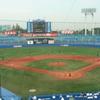 世界大学野球選手権 韓国対キューバ