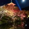 京都 紅葉狩り