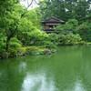 京都御苑 雨の日の散歩道
