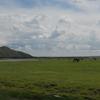 2012夏内モンゴルの旅3日目【ひたすら草原を走る!】