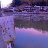 多田新池(静岡県伊豆の国)