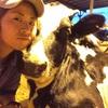 [番外編]牛のはなし①