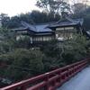 ♯45 湯河原 富士屋旅館 No.1 まずはゆっくり温泉へ