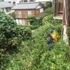 ステキなお庭再生プロジェクトWS1st: レポート第1