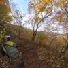 黄葉ハイキング
