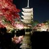 アリストンホテル京都十条おすすめ★紅葉スポット