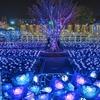 あしかがフラワーパークツアー【関東最大級500万球のイルミネーション】
