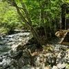 道志村にある山伏オートキャンプ場に行ってみた。川沿いキャンプ、快適でした。トイレも。(山梨県南都留郡道志村長又)