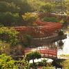高山稲荷神社|津軽の千本鳥居!日本海沿いに位置する高山稲荷神社を紹介します