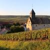 シャンパーニュ地方のブドウ畑を探索、シャンパンを購入し、シャンパンを知る旅