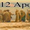 「イエスが男性たちだけを12使徒に任命されたのは、当時の文化的拘束ゆえです。」という主張はどうでしょうか。