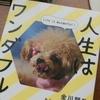 前向きに軽い気持ちになりたいあなたへ『人生はワンダフル』金川顕教 著をオススメします!