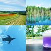 7月〜8月に国内旅行をするなら北海道の富良野・美瑛・旭川がおすすめの観光地だ!