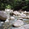 真夏の渓流 ~匿名さんからの投稿です~