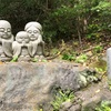 犬山寂光院⑤と満開のナンジャモンジャ(ヒトツバタゴ)の花