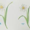 「ポストカードぬり絵」~四季の花だより~1枚目の作品
