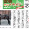 指名馬情報:牝馬第6位【画像有り】