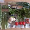 無農薬野菜で常備菜 プチレシピ付き