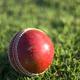 """【イギリス VS. インド】ニレーシュと5日間にわたるクリケット国際試合""""Test Match""""観戦!"""