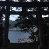 大島さん、伊豆大島へ その1 強制終了の起こる島