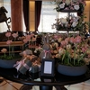 ウェスティンホテル東京にSPGアメックスの無料宿泊特典で宿泊してきました♬