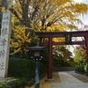 外国人観光客に人気! 根津神社の千本鳥居