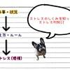 #6-5【終】ストレスを生み出す工程を知る 〜まとめ〜