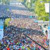 神戸マラソン、5年連続出場決定!これで1つの区切りになりましたとさ。